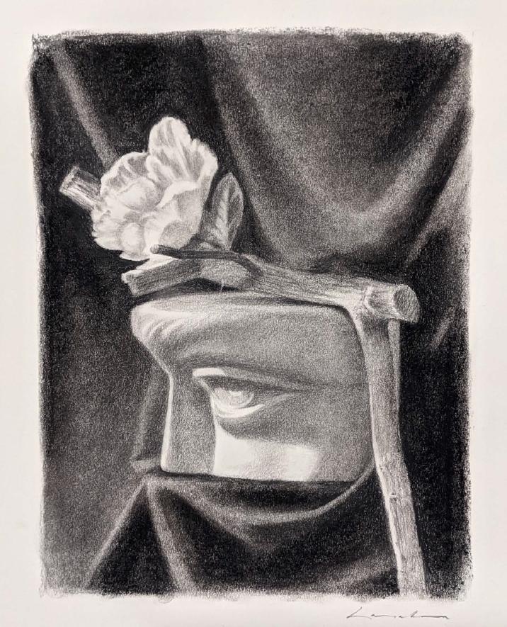 Charcoal drawing -artist Lisa Larrabee